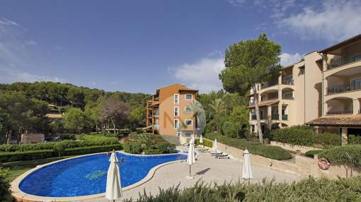 Beautiful penthouse close to the sea in Cala Fornells, Majorca