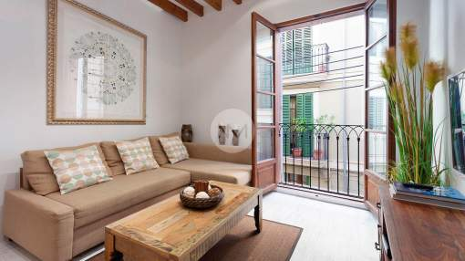 Cute apartment in La Lonja in Palma de Mallorca