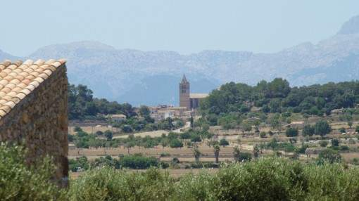 Beautiful finca-plot with building licence and its own olive grove between Sant Joan and Sineu